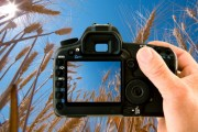Photography services in Sheffield